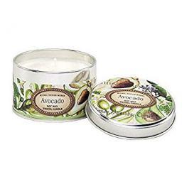 Michel Design Works Přírodní svíčka v plechu Avocado (Soy Wax Travel Candle) 113 g Oleje