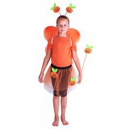 Karnevalový kostým dýně s křídly