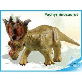 Dinosaurus - Pachyrhinosaurus