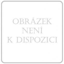 DONGYANG DONGBAI Obin. pruž. CZIDEÁL 6cmx5m/+2ks upín.sponek