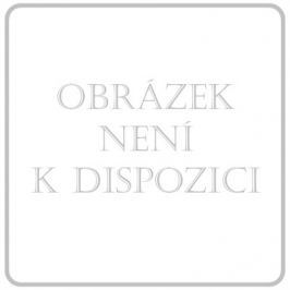 DONGYANG DONGBAI Obin. pruž. CZIDEÁL 12cmx5m/+2ks upín.sponek