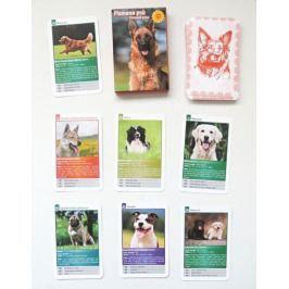 MIČÁNEK Dětské karty Kvarteto - Plemena psů