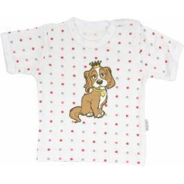 Mamatti Bavlněné tričko Pejsek - krátký rukáv,  roz. 74, 74 (6-9m)