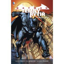 Batman: Temný rytíř 1 - Temné děsy - Finch, David