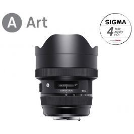 Sigma 12-24mm f/4 DG HSM Art (Nikon)