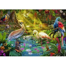 RAVENSBURGER Puzzle Ptačí ráj 1000 dílků Puzzle