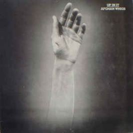 Afghan Whigs : Up In It LP