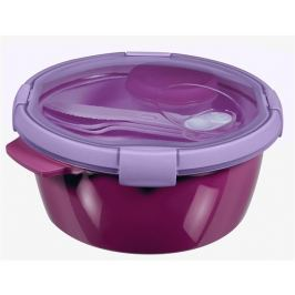 Curver Lunchbox  Smart To Go 1,6 l fialová