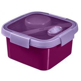 Curver Lunchbox  Smart To Go 1,1 l fialová