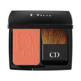 Dior Pudrová tvářenka (blush Vibrant Colour Powder Blush) 7 g 676 Coral Cruise