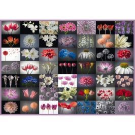 SCHMIDT Puzzle  58297 Květinový pozdrav 2000 dílků