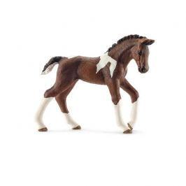 SCHLEICH Zvířátka  - hříbě koně trakehnerského