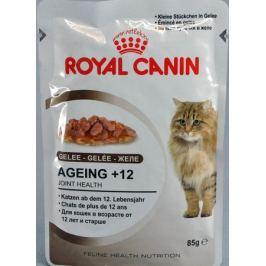 RC cat kapsa AGEING +12 v želé - 85g