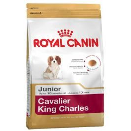 ROYAL CANIN KAVALÍR JUNIOR - 1,5kg