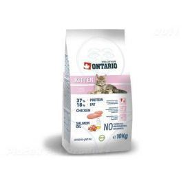 ONTARIO cat KITTEN - 2 kg