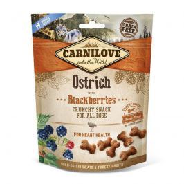 CARNILOVE dog OSTRICH/blackberries - 200g Psi