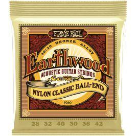 Ernie Ball Earthwood Folk